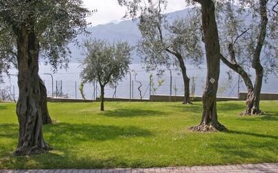 Camping Tonini