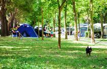NUMANA BLU Family Camping & Resort