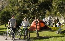 Camping Zoo