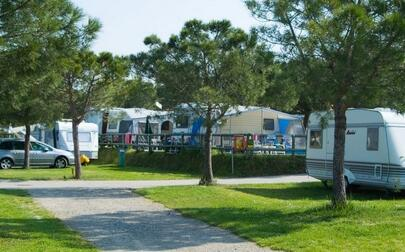 camping le palme lazise verona view all information. Black Bedroom Furniture Sets. Home Design Ideas