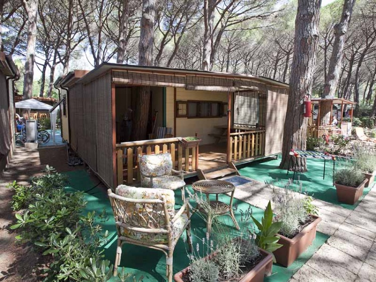 Offers Archive Camping Free Beach